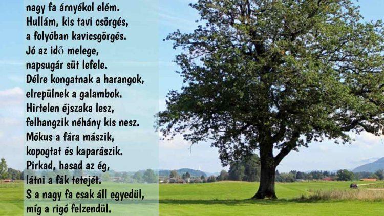 Madarak és fák napja lírái formában